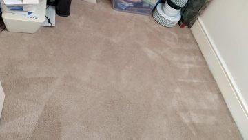 Carpet Cleaning Rathmichael